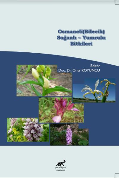Osmaneli (Bilecik) Soğanlı-Yumrulu Bitkileri