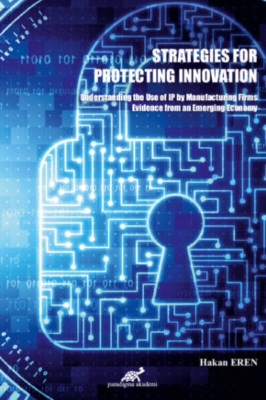 Strategies For Protecting Innovation